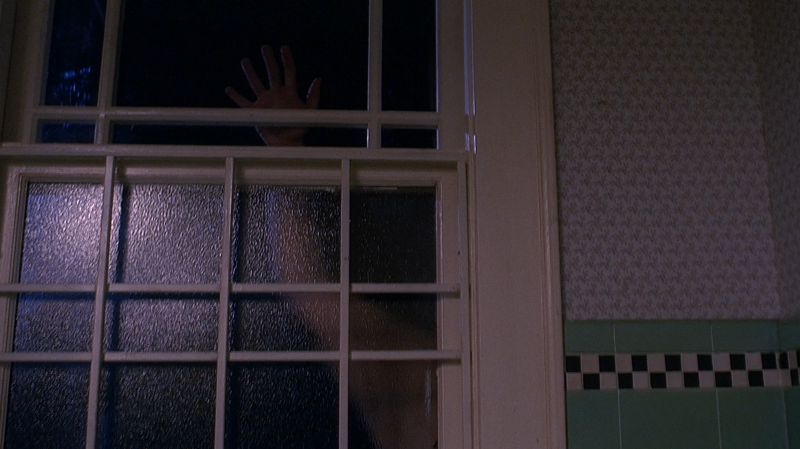 11 - A hand in the window